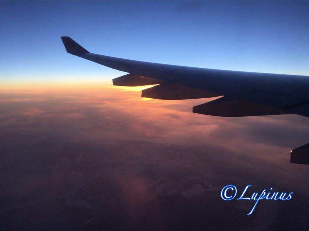フライト風景